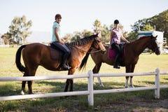 Portrait d'équitation femelle d'amis Images libres de droits