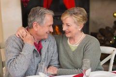 Portrait d'étreindre supérieur heureux de couples Photos stock