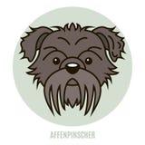 Portrait d'Affenpinscher Illustration de Vecteur