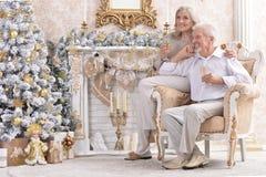 Portrait d'amuser de vieux couples célébrant Noël près de l'arbre de sapin photo libre de droits