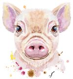 Portrait d'aquarelle de mini porc illustration de vecteur