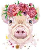 Portrait d'aquarelle de mini porc illustration de vecteur