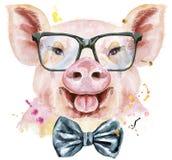 Portrait d'aquarelle de porc avec le noeud papillon et les verres illustration stock