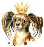 Portrait d'aquarelle de terrier de jouet aux cheveux longs avec une couronne sur sa tête illustration libre de droits