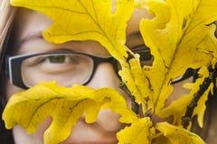 Portrait d'automne avec des feuilles de chêne images libres de droits