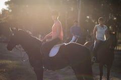 Portrait d'entraîneur avec le cheval d'équitation de femmes Image stock