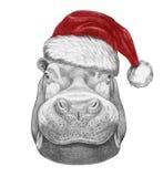 Portrait d'hippopotame avec Santa Hat Photos stock