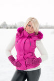 Portrait d'hiver de fille sexy Photo libre de droits