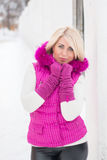 Portrait d'hiver de fille sexy Photo stock