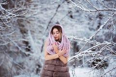 Portrait d'hiver : Jeune jolie femme habillée dans vêtements de laine chauds, écharpe et tête couverte posant l'extérieur image libre de droits