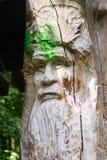 Portrait d'homme en bois Image libre de droits