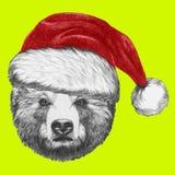 Portrait d'ours avec Santa Hat Images stock