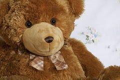 Portrait d'ours de nounours avec le lien Images libres de droits