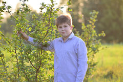 Portrait d'un adolescent dans la nature à l'été Photographie stock libre de droits
