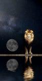 Portrait d'un beau lion, lion dans la lune de nuit étoilée Photographie stock libre de droits