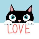 Portrait d'un chat avec l'amour de mot Images libres de droits