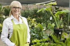 Portrait d'un jardinier supérieur à la jardinerie image stock