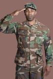 Portrait d'un jeune soldat des USA Marine Corps d'Afro-américain saluant au-dessus du fond brun Photos libres de droits