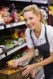 Portrait d'un travailleur blond de sourire prenant un citron image libre de droits