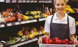 Portrait d'un travailleur blond de sourire tenant des légumes Image libre de droits