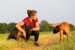 Portrait d'une adolescente avec des chiens de boxeur Images libres de droits