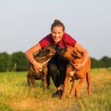 Portrait d'une adolescente avec des chiens de boxeur Image libre de droits