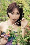 Portrait d'une belle fille avec la peau bien-toilettée et le beau maquillage photographie stock libre de droits