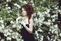 Portrait d'une belle fille dans une robe noire posant près d'un buisson avec les fleurs blanches Photographie stock
