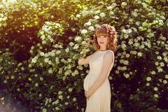 Portrait d'une belle fille enceinte rousse et bouclée sur le Th images stock
