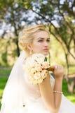 Portrait d'une belle jeune mariée heureuse de sourire images libres de droits