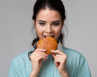 Portrait d'une brune attrayante mordant un biscuit Images libres de droits