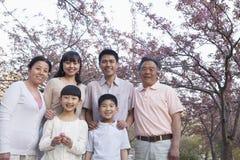 Portrait d'une famille multi-de generations de sourire parmi les cerisiers et apprécier le parc pendant le printemps Photos stock