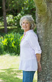 Portrait d'une femme mûre se penchant contre le tronc d'arbre Images libres de droits