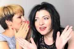 Portrait d'une fille de bavardage disant un secret dans l'oreille à son ami s'asseyant sur un divan à la maison Photos stock