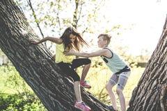 Portrait d'une fille sur un arbre avec son ami Photographie stock