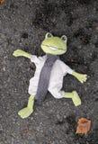 Portrait d'une grenouille morte Photographie stock