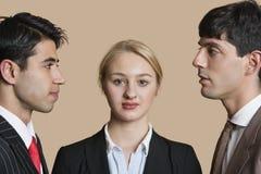 Portrait d'une jeune femme d'affaires avec les collègues masculins regardant fixement l'un l'autre au-dessus du fond coloré Image stock