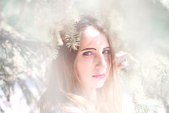 Portrait d'une jeune femme dans les branches impeccables Photo libre de droits