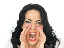 Portrait d'une jeune femme hispanique frustrante fâchée criant dans l'outrage Photos stock