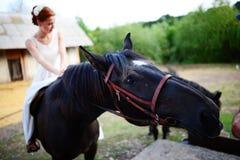 Portrait d'une jeune mariée à cheval sur le fond d'un été s photographie stock libre de droits