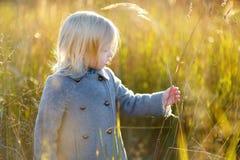 Portrait d'une petite fille mignonne le jour d'autunm Photo libre de droits