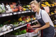 Portrait d'une prise blonde de sourire de travailleur légumes Images libres de droits