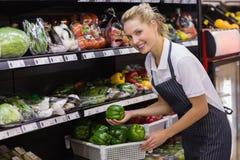 Portrait d'une prise blonde de sourire de travailleur légumes Photographie stock