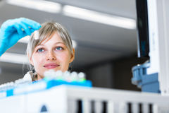 Portrait d'une recherche de mise en oeuvre de chercheur féminin dans un laboratoire Photos stock