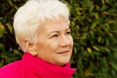 Portrait d'une vieille dame gaie au-dessus de fond vert. image stock
