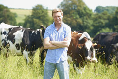 Portrait Of Dairy Farmer In Field With Cattle. Portrait Of Proud Dairy Farmer In Field With Cattle royalty free stock image