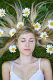 Portrait with daisies Royalty Free Stock Images