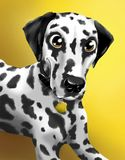 Portrait of a dalmatian on a yellow background. Hand drawn illustration Royalty Free Stock Image