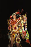 Portrait of dancing young man, carnival reveler Royalty Free Stock Photography