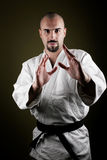 Portrait of dangerous aikido master Royalty Free Stock Images